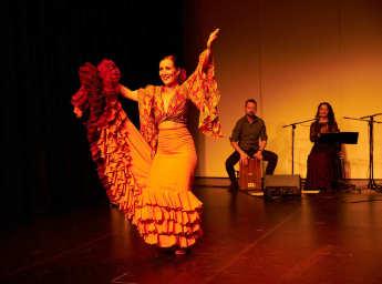 Flamenco Shows Wien