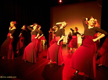 Flamenco Kurse Wien